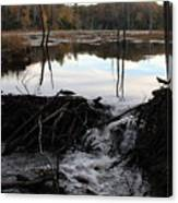 Calm Photo Of Water Flowing Canvas Print