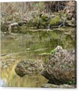Calm Waters Scenery Canvas Print