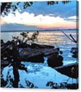 Caloosahatchee Mangroves Canvas Print