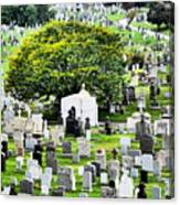 Calvary Cemetery From Above Canvas Print