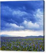 Camas Glory At Camas Prairie In Idaho Canvas Print