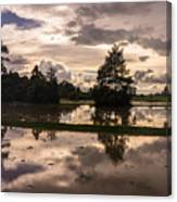 Cambodian Countryside Rice Fields Reflection Canvas Print