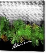 Camo -flower-range Canvas Print