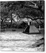 Camp Under Live Oaks Canvas Print