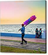 Campeche Colors Canvas Print