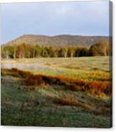 Canaan Valley State Park Canvas Print