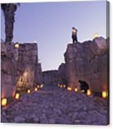 Canaanite Entrance Gate To El Megiddo Canvas Print