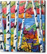Canadian Birches by Prankearts Canvas Print