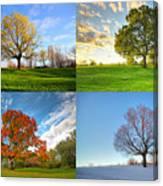 Canadian Seasons Canvas Print