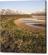 Canadian Tundra In Evening Light. Canvas Print