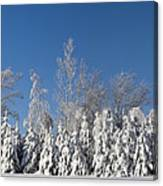 Canadian Winter Panorama Foster Quebec Canvas Print
