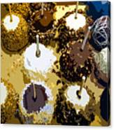 Candied Apples Canvas Print