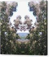 Candy Floss Greek Bush Canvas Print