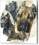 Cane Corso W/ghost Canvas Print