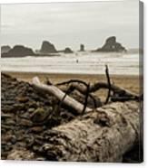 Cannon Beach 2 Canvas Print