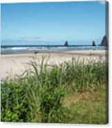 Cannon Beach And Purple Bloom Canvas Print