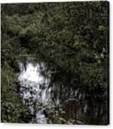Cannon Beach Creek Canvas Print
