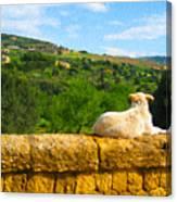 Cano Di Agrigento Canvas Print