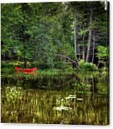 Canoe Among The Reeds Canvas Print