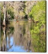 Canoeing On The Hillsborough River Canvas Print