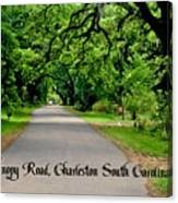 Canopy Road Canvas Print