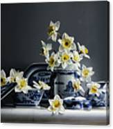 Canton With Daffodils Canvas Print