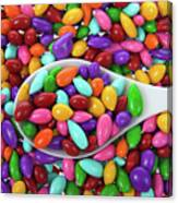 Candy Covered Sunflower Seeds Canvas Print