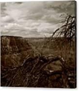 Canyon Black And White Canvas Print