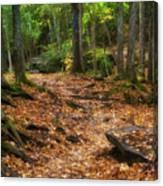 Canyon Falls Trail 1 Canvas Print