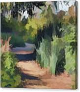 Canyon Path II Painterly Canvas Print