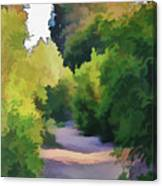 Canyon Path IIi Painterly Canvas Print