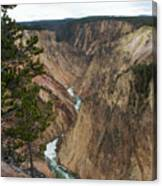 Canyon River Canvas Print
