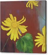 Canyon Sunflower Canvas Print