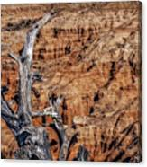 Canyon View Nevada Canvas Print