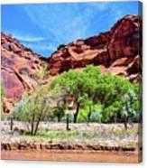Canyon Wall. Canvas Print