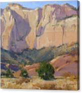 Canyon Walls Of Zion National Park Canvas Print