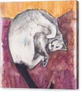 Cap Nap Canvas Print