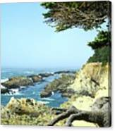 Cape Arago, Or. Canvas Print