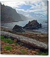 Cape Arago Oregon Canvas Print