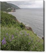 Cape Breton Coast Canvas Print