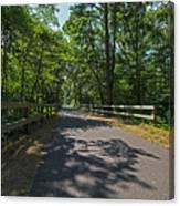Cape Cod Rail Trail Trees Eastham Ma Fence Canvas Print