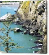 Cape D View Canvas Print