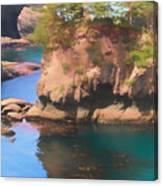 Cape Flattery Reflection Canvas Print
