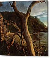 Cape Perpetua Sunset Canvas Print