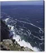 Cape Point, South Africa Canvas Print