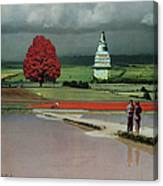 Capital Fields Canvas Print
