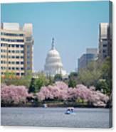 Capitol Blossoms Canvas Print