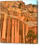 Capitol Gorge Desert Varnish Canvas Print