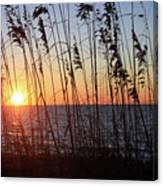 Captiva Sunset Canvas Print