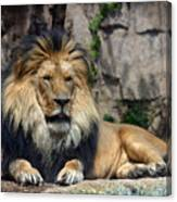 Captive Pride Canvas Print